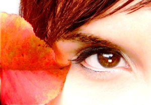 SecretRoomArtwork © 2011